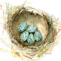 Watercolor Painting Art Giclee Print Bird Nest with 5 Blue Eggs Nature Still Life Illustration Robin Nursery Home Decor