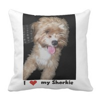 I love my Shorkie Throw Pillow