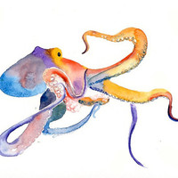 OCTOPUS Original watercolor painting 10X8inch