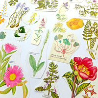 Vintage flowers paper pack, 38 piece Floral paper pack, Scrap-booking Supplies, Journal Supplies, paper ephemera lot, craft supplies