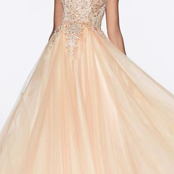 Long A-Line Tulle Prom Gown Champagne Lace Beaded Bodice Criss Cross Back