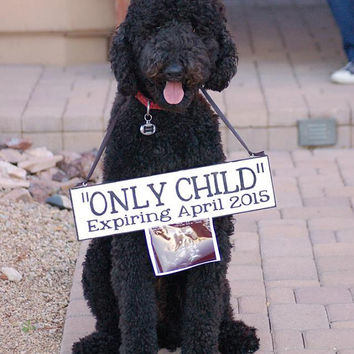 Personalized Baby Announcement Sign:  Photo Prop, Keepsake, Include the Dog or Sibling