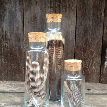 Large Tall Bottles With Corks - Filled With Feathers - Rustic Home decor, Shabby Chic, Nautical, Woodland, Unique