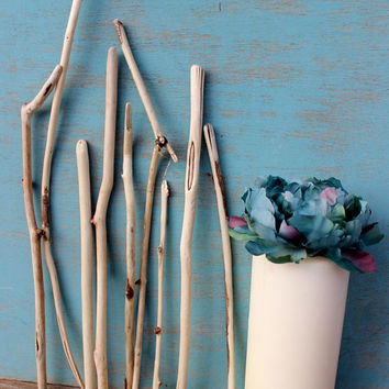 Collection of Sun Bleached Driftwood Branches for Coastal Decorating & Beach Wedding SB9