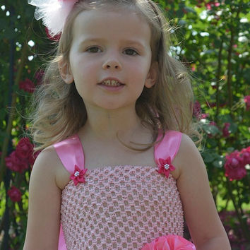 Flower Girl Dress Soft Pink Tulle Flower Girl Dress with Train Size 0-24M