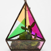 Urban Outfitters - Magical Thinking Faceted Hanging Terrarium