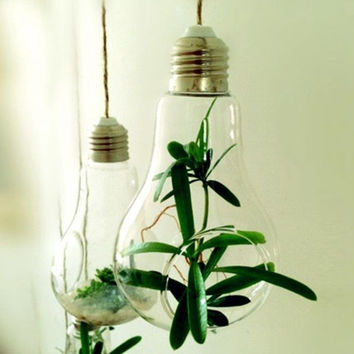 New Glass Bulb Lamp Shape Flower Water Plant Hanging Vase Container Home Indoor Office Wedding Decor(Without rope)