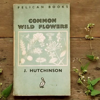 Wild Flower Penguin paperback Common Wild Flowers by John Hutchinson
