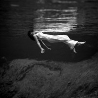 Weeki Wachee Spring, Florida Premium Poster by Toni Frissell at Art.com