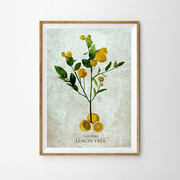 Lemon tree Botanical Art leaves Spring Art Vintage Science inspired illustration kitchen Poster Fern Print summer Decor Nature garden Decor