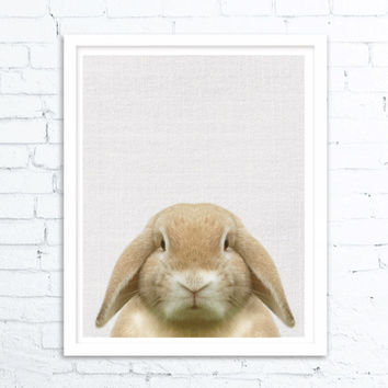 Bunny Print, Nursery Print, Woodlands Nursery, Bunny Rabbit Art, Rabbit Wall Print, Rabbit Print Art, Woodland animals, Nursery Woodland Art