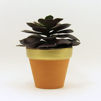 Terracotta Pot, Succulent Planter, Cute Planter, Flower Pot, Plant Pot, Air Plant Holder, Indoor Planter, Succulent Pot, Gold Planter