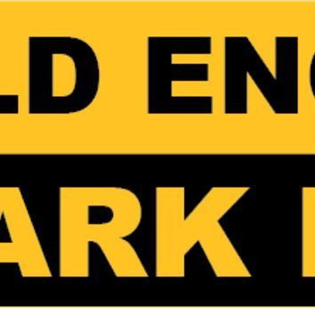 I'm Old Enough to Park Here Bumper Sticker