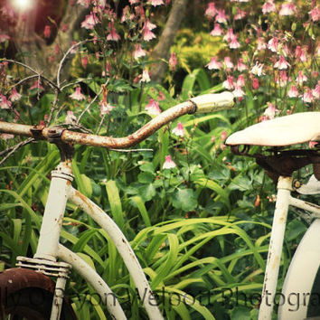 Bicycle Art  Print vintage style fine art shabby chic cottage style photography