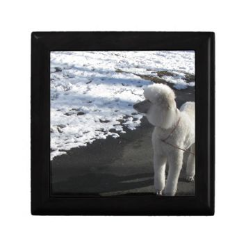 Poodle Photo Gift Box