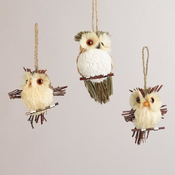 Natural Fiber  Owl Ornaments, Set of 3 - World Market
