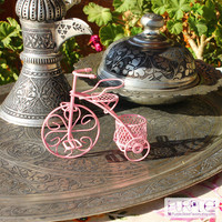 Pink Bicycle Baby Shower Favor Bike Wedding Favors tricycle wedding decorations bridal shower baby shower its a girl new born favor ideas
