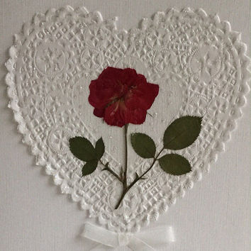 Valentine Rose Card, Red Rose Card, Happy Valentine's Day Romance Card for Lovers Day Greeting Card
