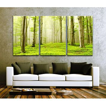 """LARGE 30""""x 60"""" 3 Panels Art Canvas Print Beautiful Nature Forest Scenery Trees Wall decor interior Home (Included framed 1.5"""" depth)"""