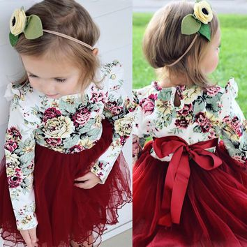 Toddler Kid Baby Girls Floral Long Sleeve Tulle Tutu Skirts Dress Outfits Set US