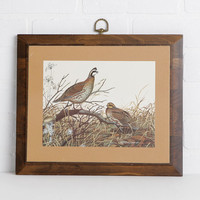 Vintage Bobwhite Quail Picture with Brass Hanging Loop, Wild Game Bird Art for Hunting Lodge or Rustic Cabin