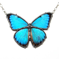 Blue Morpho Butterfly Necklace - Real Butterfly Wings - Natural Boho Jewelry