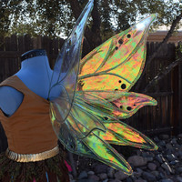 Medium/Large Morning Dew Iridescent Fairy Wings