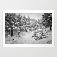 Snowing at the forest Art Print by Guido Montañés