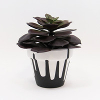 Terracotta Pot, Succulent Planter, White Planter, Flower Pot, Small Pot, Succulent Pot, Air Plant Holder, Indoor Planter, Black Drips