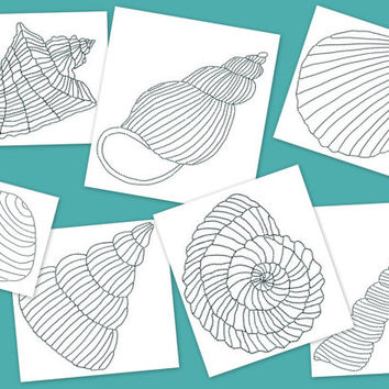 Sea shells embroidery design. 7 shells in 4 sizes. Sea shells for quilts. Underwater quilt design. Quilt squares design.