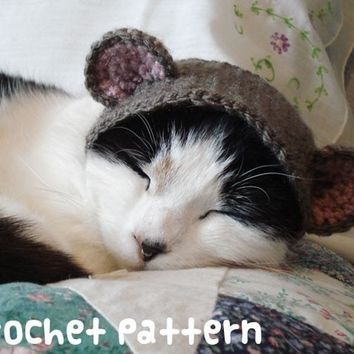 crochet pattern - teddy bear pet hat - cat halloween costume amigurumi kawaii small dog chihuahua disguise - (instant download)