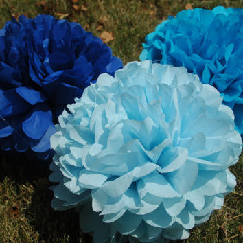 Baby boy shower decoration- Tissue paper pom poms - Baby Blue - 12 pcs.  party pom package - It's a boy