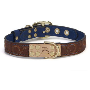 Royal Blue Dog Collar with Brown Leather + Brown/Orange Stitching