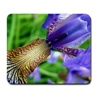 Blue Bearded Iris Spring Flowers Closeup Large Mousepad