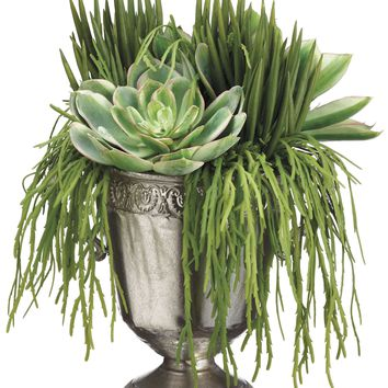 Lifelike Mixed Succulent Arrangement in Footed Decorative Urn