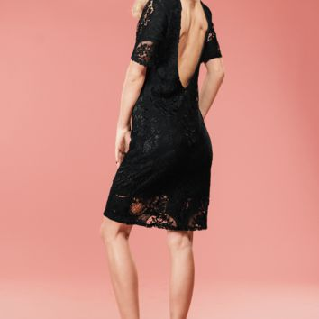 Ellie Lace Dress