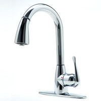 Shop cleanFLO Andromeda Chrome 1-Handle Pull-Down Kitchen Faucet at Lowe's