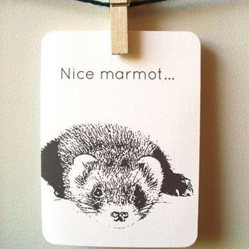 Movie Quote card Nice Marmot by 4four on Etsy