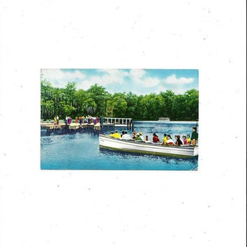 1960s, 1970 Color Photo Print of Wakulla Springs, Florida, Posted with 6 Cent Stamp & Message, Travel Souvenir, Vintage Postcard Ephemera
