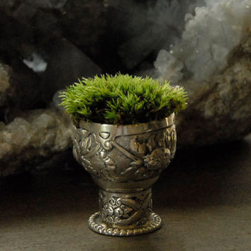 Silver Moss Planter Antique Mini Goblet Ornate by Vertegris