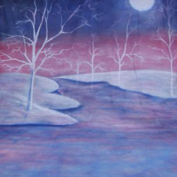 WINTER MOONLIGHT SCENE BACKDROP HAND PAINTED - 10X20 - LCMSS175 - LAST CALL