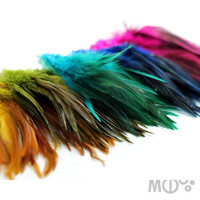 Mixed Feathers Pack 2 inches strip of each color Pink by MCDecarie