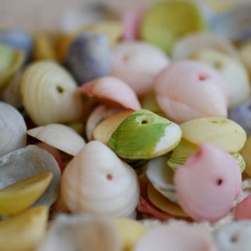 Lot of 40 Pastel Colored Seashell Beads, Jewelry Supplies.