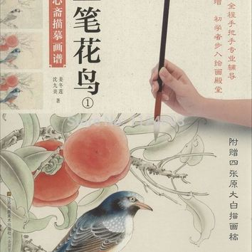 Chinese color gongbi line drawing painting book flower bird Paintings  for beginners Chinese coloring fine brushwork art book