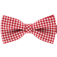 Tok Tok Designs Pre-Tied Bow Tie for Men & Teenagers (B306)