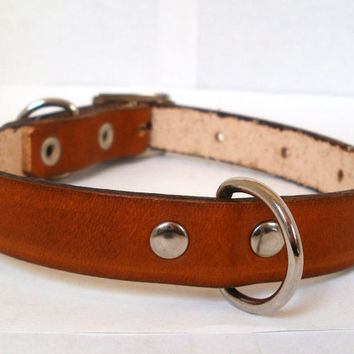 """Leather dog collar, 1/2"""" wide, with rear D ring, avail in 15 colors, X small dog collar, brown dog collar, red dog collar, green dog collar"""