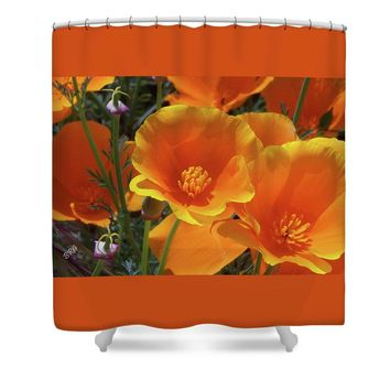 California Poppies Shower Curtain for Sale by Ben and Raisa Gertsberg