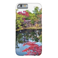 Missouri Fall iPhone 6 Barely There iPhone 6 Case