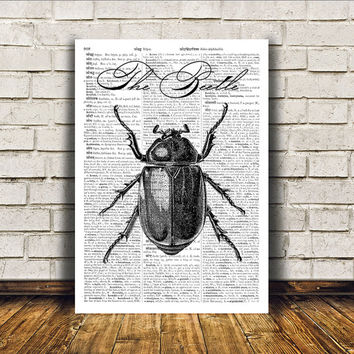 Beetle poster Modern decor Insect art Dictionary print RTA275