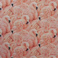 Flamingo - Wallpaperdirect.com